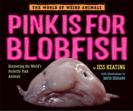 Pink is for Blobfish Discovering the World_s Perfectly Pink Animals